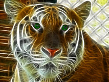 head tiger för fractal Royaltyfria Bilder