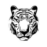 Head of Tiger. Tiger head illustration isolated on white background Stock Photo