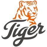 Head tiger och typografi arkivbilder