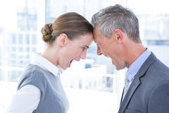 Head to head business colleagues quarreling Stock Photos