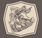 Head to a pig. Engraving style Head of a pig in frame stock illustration