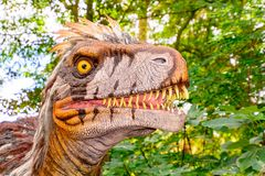 Head of the Utharaptor dinosaur royalty free stock photography
