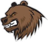 Head vektor för björn arkivfoton