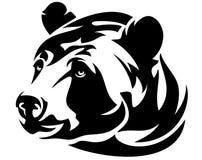 Head vektor för björn Arkivbilder