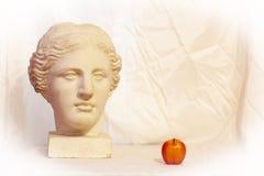 Head of Venus stock photo