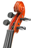 Head of a violin Stock Photography