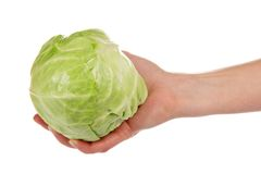 Head of a white cabbage in the female hand Royalty Free Stock Images