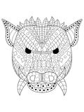 The head wild boar Coloring vector for adults Stock Image