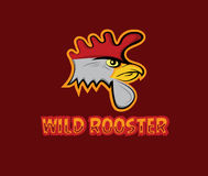 Head of wild rooster Stock Photography