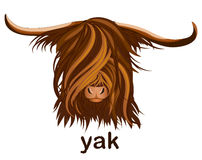 The head of a Yak with long hair. The head of a Yak. Logo, emblem, mascot. Vector illustration Stock Photography
