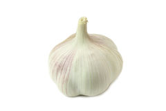 Head young garlic Royalty Free Stock Images