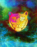Head of a young tiger on abstract space background with graphic structure effect. Head of a young tiger on abstract space background with graphic structure royalty free illustration