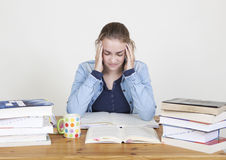 Headache from learning Stock Images