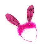 Headband on white background , Headband pink rabbit Royalty Free Stock Photography