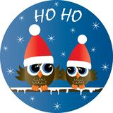Merry christmas happy holidays two cute owls vector illustration