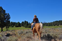 Headed to Pasture. A girl on a palomino horse from behind as they head toward the pasture Royalty Free Stock Images