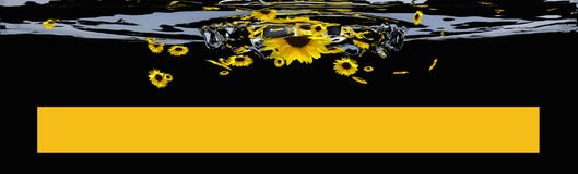 Header with sunflowers and yellow bars for text. 3d illustration Royalty Free Stock Photo