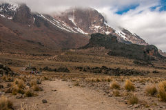 Heading to Lava Tower, Kilimanjaro Stock Images