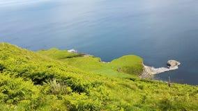 Headland и руины Skye стоковые изображения rf