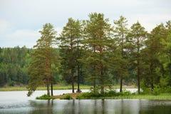 Headland с деревянной скамьей и таблицей Стоковое Изображение