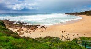 Headland Narooma Австралия Duesbury стоковые фото