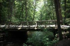 Headless γέφυρα ιππέων νυσταλέο σε κοίλο Στοκ φωτογραφία με δικαίωμα ελεύθερης χρήσης