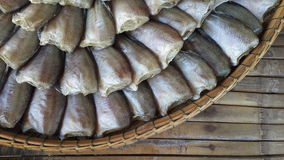 Headless dry fish Stock Images