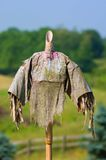 Headless scarecrow. Weathered scarecrow without a head, under a sunny sky Royalty Free Stock Photos