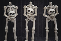 Headless skeletons Royalty Free Stock Image