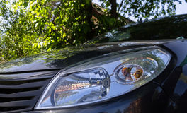 The headlight of a car standing under a tree Royalty Free Stock Images