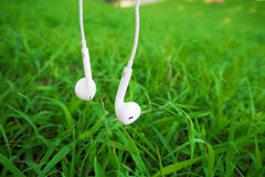 Headphones on green grass. Headphones on green grass at garden in morning day Stock Image