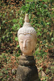 The heads of abandoned old buddha statue Stock Image