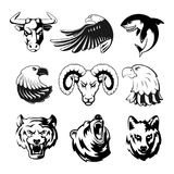 Heads of animals for logo or sport symbols. Grizzly, bear and eagle. Monochrome mascots illustrations for labels. Wolf. Shark and ram. Big vector set of vector illustration