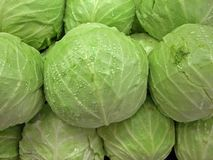 Heads of Cabbage Royalty Free Stock Photo