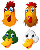 Heads of chickens and ducks royalty free illustration