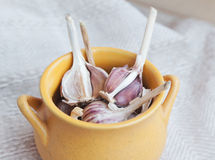 Heads of garlic in a  bowl Royalty Free Stock Photo