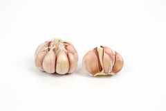 Heads of garlic on a white background Stock Images