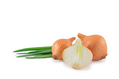 Heads and leaves of onions. Isolated on a white background Stock Image