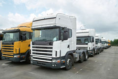 Heads of Semitrailer Trucks. Many new trailer trucks' heads are parking together for selling Stock Photos