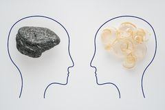 Heads of two people with sawdust brain shape and stone brain shape. Two people with different thinking. Rational and irrational. Thinking. Idea and teamwork stock photo