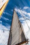 Headsail against blue skies Stock Image