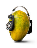 Headset. A pawpaw wearing a headphones Royalty Free Stock Images