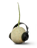 Headset. A cantaloupe wearing a headphones Royalty Free Stock Photography