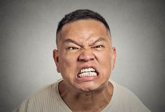 Headshot angry middle aged man with open mouth aggressive screaming Stock Photo