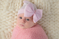 Headshot of a Newborn Baby Girl Royalty Free Stock Photography