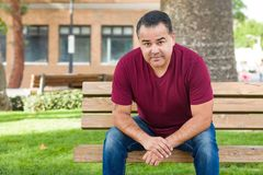 Handsome Hispanic Man on a Park Bench. Headshot Portrait of Handsom Hispanic Man royalty free stock image