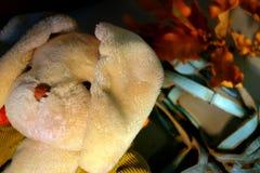 Headshot van een oud gevuld stuk speelgoed van de konijnpluche met slappe oren stock foto's