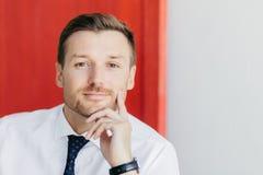 Headshot van ernstige ongeschoren jonge mannelijke beambte houdt kin, bekijkt direct camera, gekleed in wit overhemd met elegant  stock afbeelding
