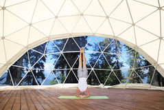 Headstand Royalty Free Stock Photo