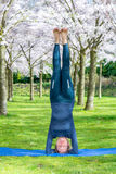 Headstand Royalty Free Stock Image